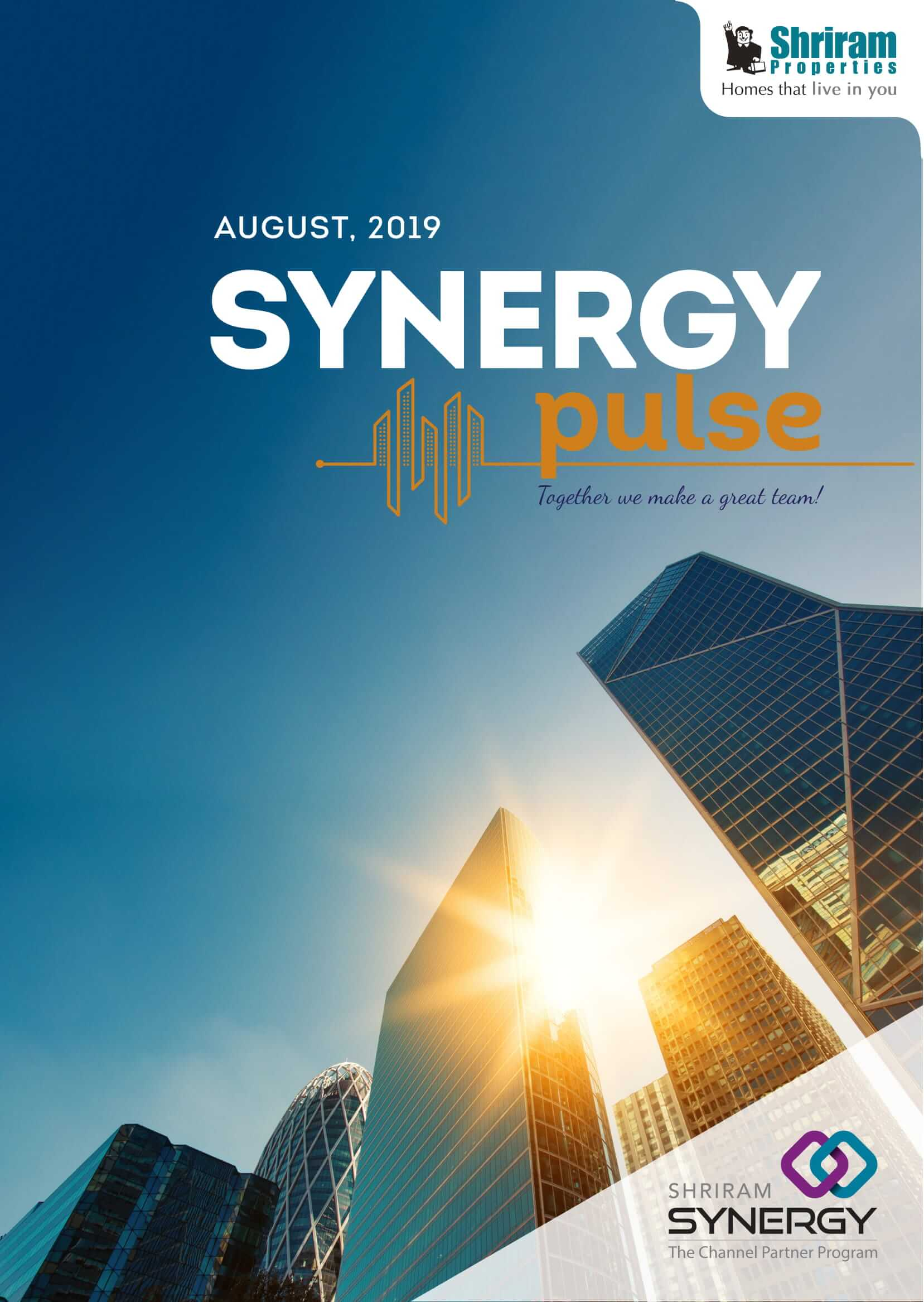 Synergy newsletter